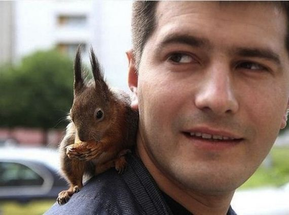 soldier-squirrel