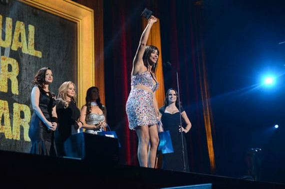 stars_2013_avn_awards