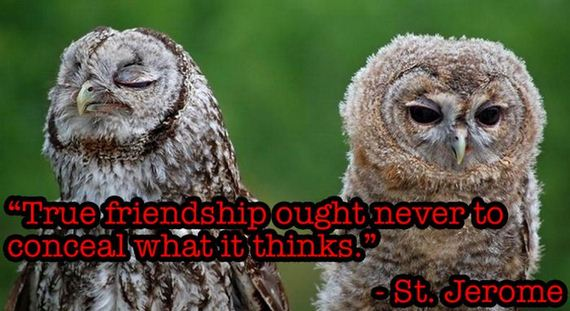things_ever_said_about_friendship