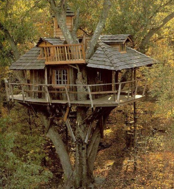 Tree houses for adults barnorama - Tree house plans for adults ...
