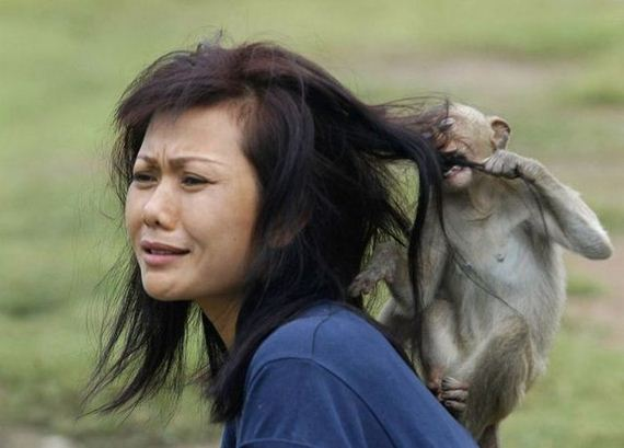 women_and_animals_dont_always_get_along