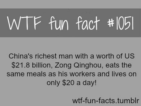 wtf_fun_facts