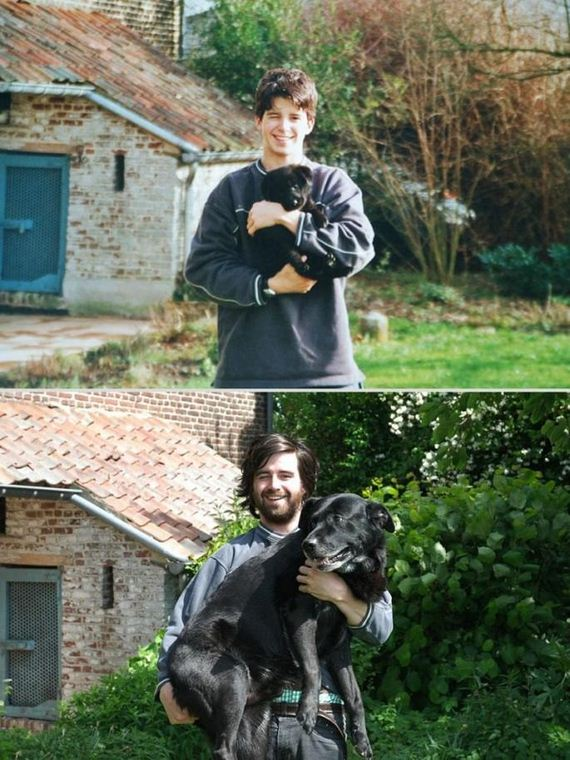 Animals-Before-and-After