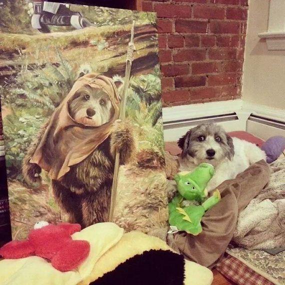 adorable-animals-posing