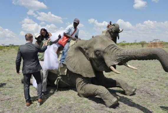 african-wedding