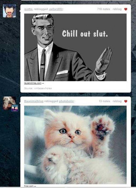 best_tumblr_dashboard