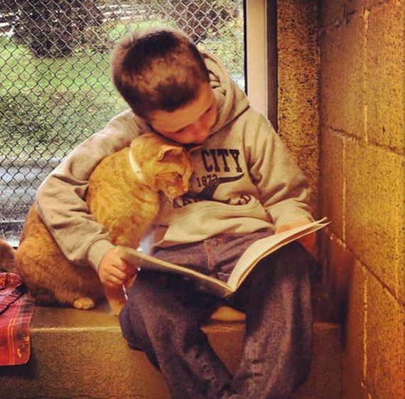 book_buddies