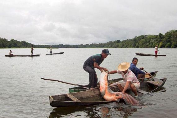 brazil_fishing