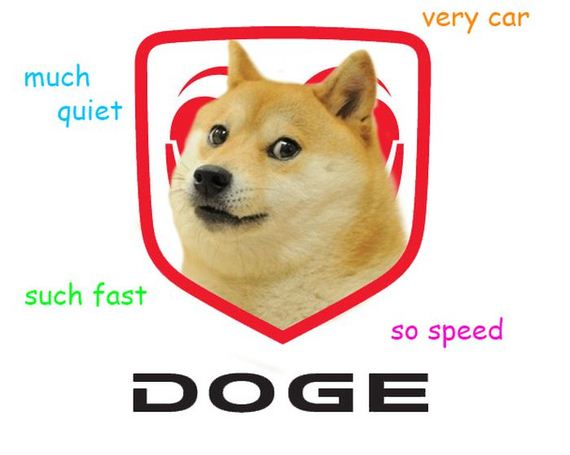 the best of  doge