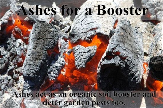 easy_hacks_to_make_gardening_a_breeze