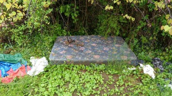 extreme_makeover_sx_mattress_in_the_middle_of_the_woods_edition
