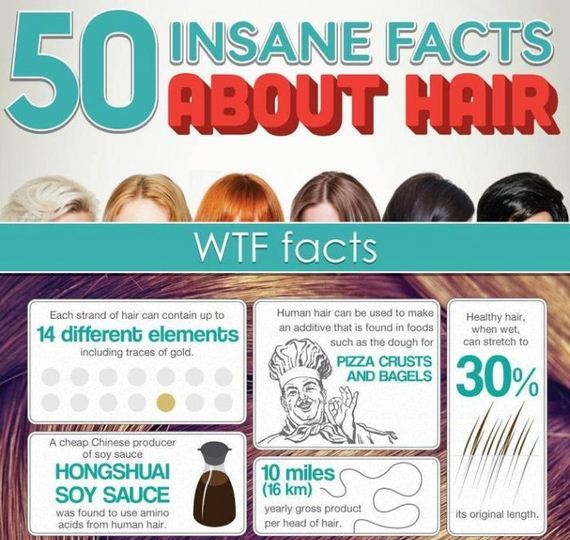 facts_about_hair