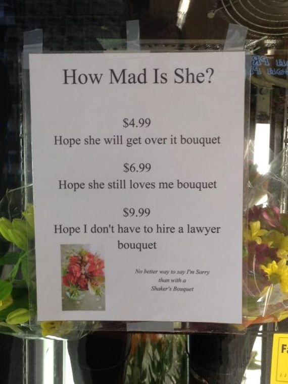funny-pictures-556