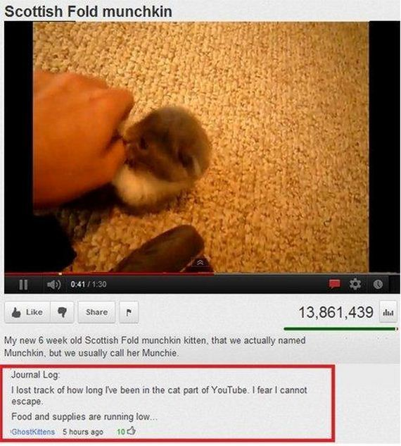 funny-pictures-573