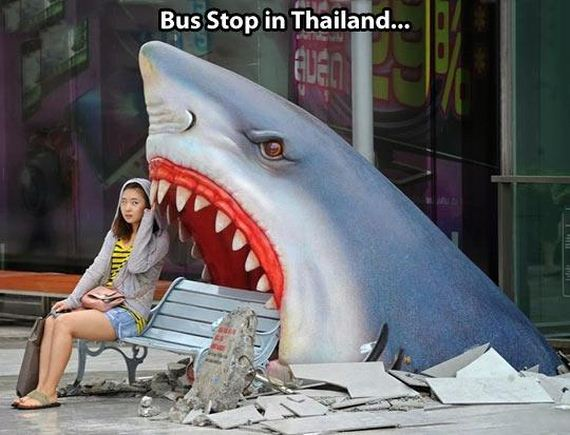 funny-pictures-606