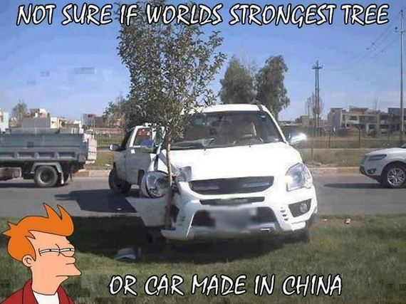 funny-pictures-633