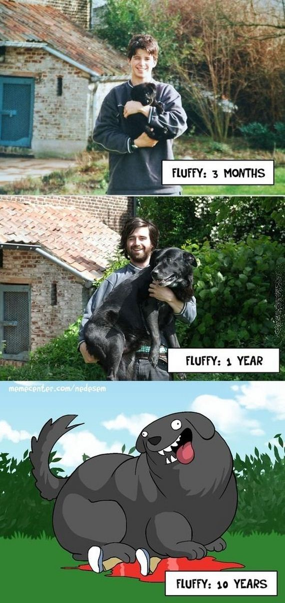 funny-pictures-661