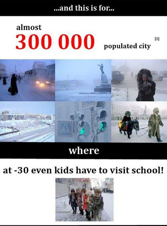 funny_cold