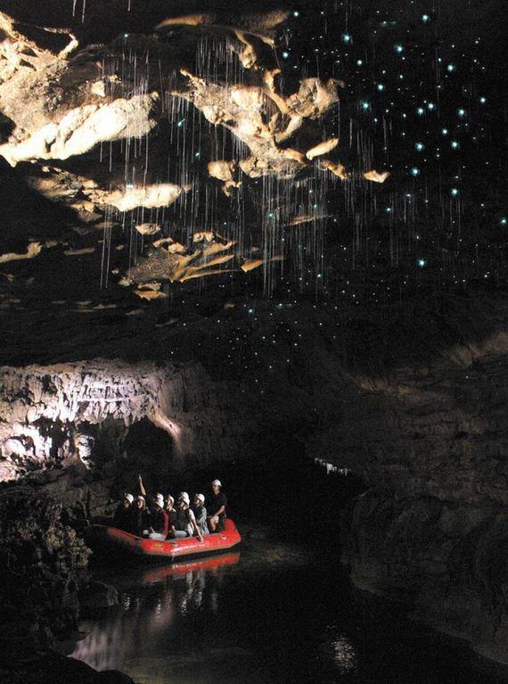 glowworm_caves_new_zealand