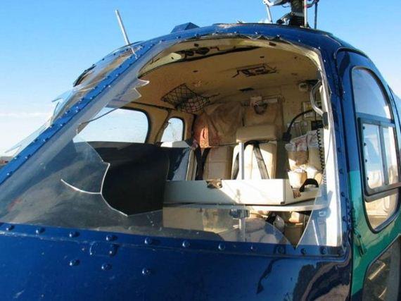 helicopter_bird