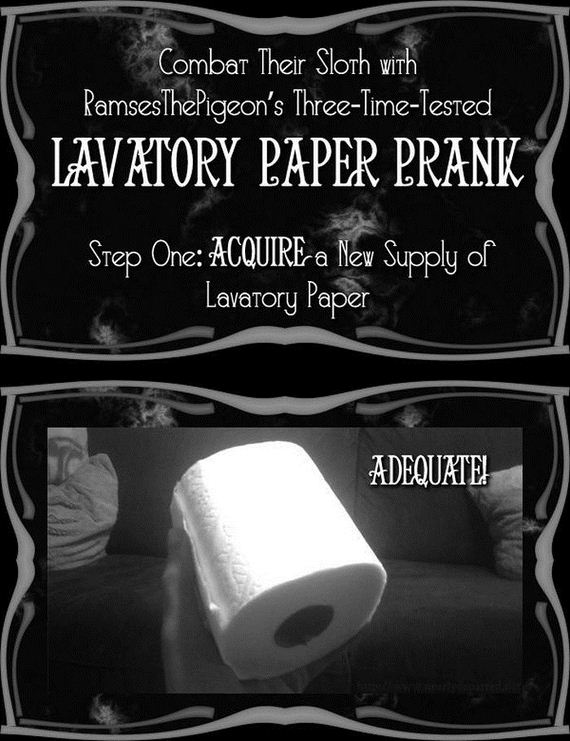 how_to_execute_the_most_annoying_toilet_paper_prank_ever