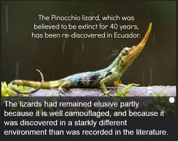 interesting_facts_about_science