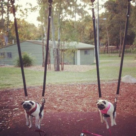 Swinging Barnorama