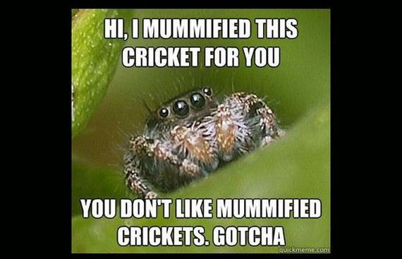 hair spiders Pubic