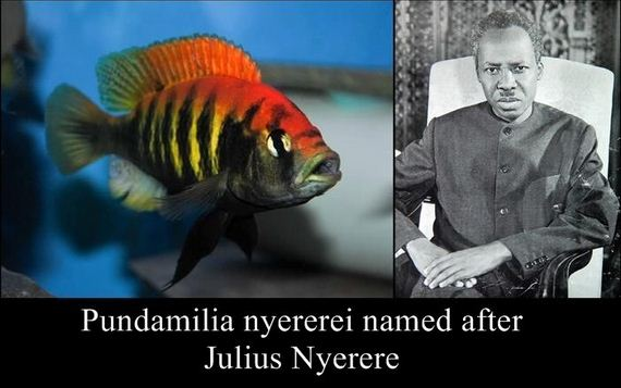 species_named_after_famous_persons_strange
