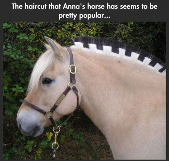 the_horses_in_frozen_are_real