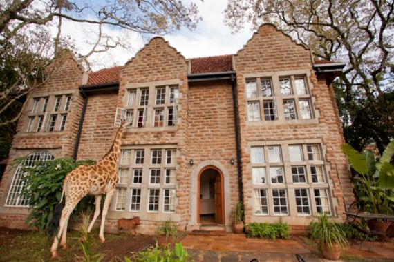 this-is-giraffe-manor
