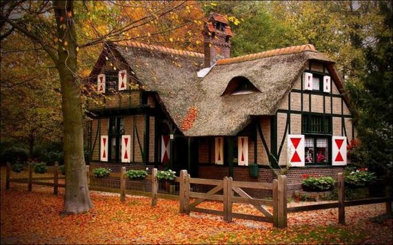 this_is_what_a_house_in_the_woods_should_look_like