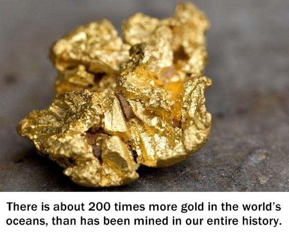 weird-facts