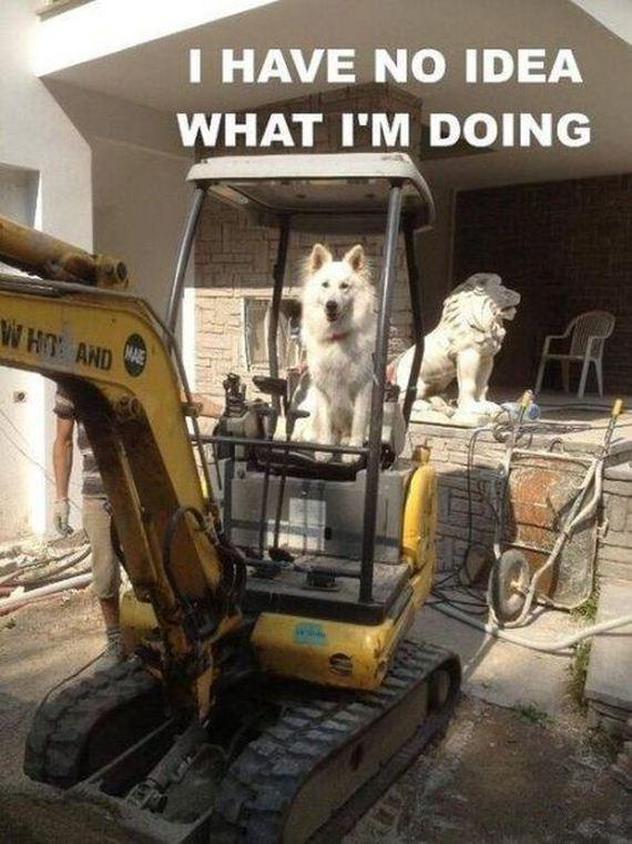 work_fails_job_lols12