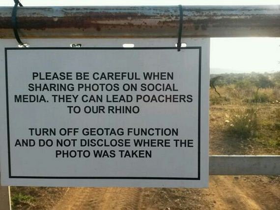 YOU-POACHERS