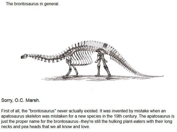 about_dinosaurs