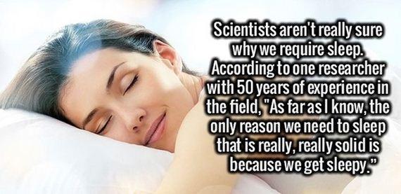 amusing_facts
