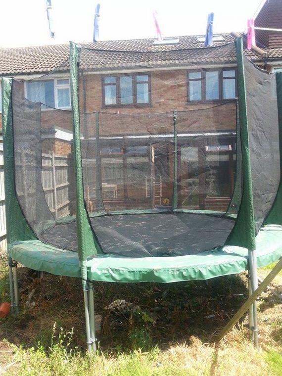 fox-trampoline