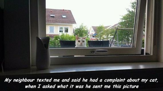 funny-pictures-763