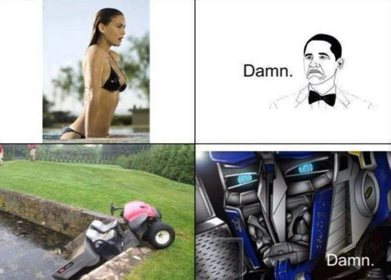 funny-pictures-791