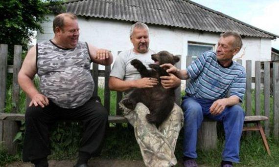 russia-bears-streets