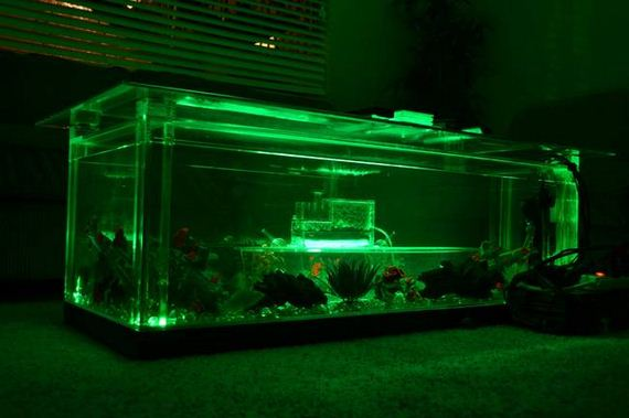 Fish-Tank-Coffee-Table