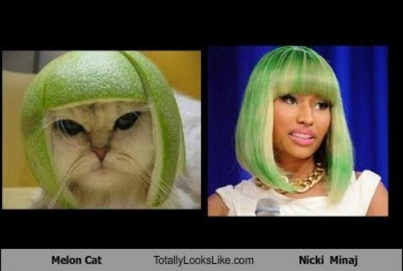 Funny Look Alikes
