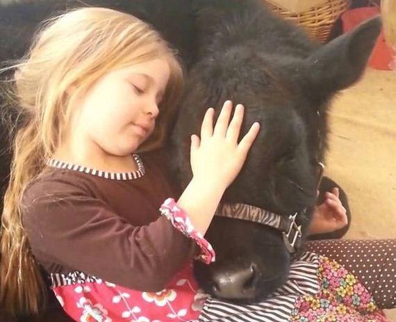 Κορίτσι βοοειδών