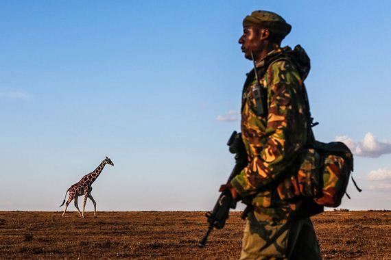 Kenya-extinction-rhino