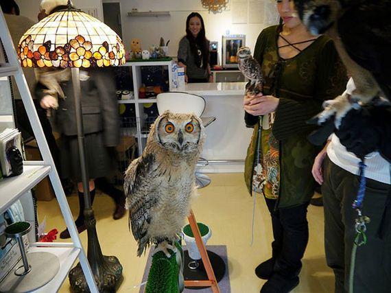 Owl-Bar-Opening-London