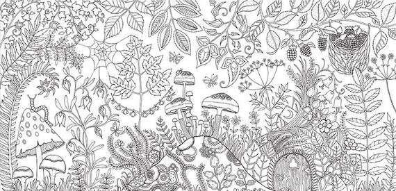 Artist Creates Adult Coloring Books