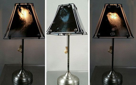 animal-lamp-ray