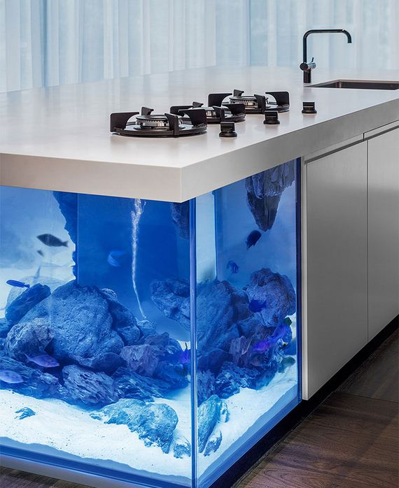 aquarium-island-kitchen