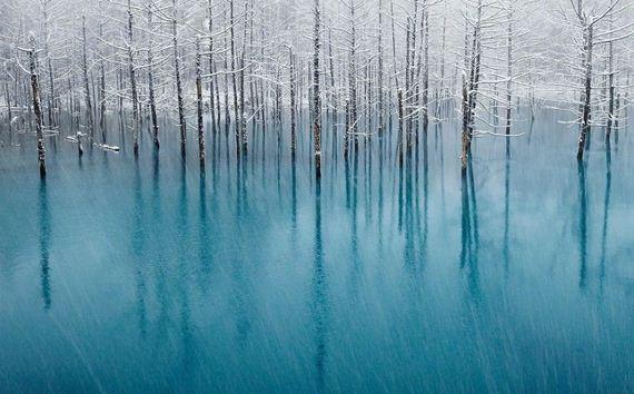 blue-japan-pond